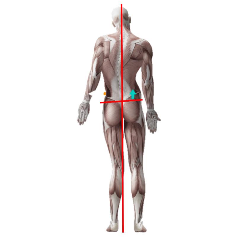 déséquilibre postural fin